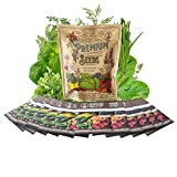 12 Culinary Herb Seeds Assortment - Non-GMO Herb Garden Starter Set - Grow Cooking Herbs: Parsley, Thyme, Cilantro, Basil, Dill, Oregano, Sage & More