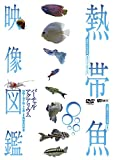 熱帯魚映像図鑑 バーチャル・アクアリウム 映像と音で愉しむ美しき熱帯魚の世界[SDA-96][DVD]