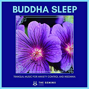 Buddha Sleep - Tranquil Music For Anxiety Control And Insomnia