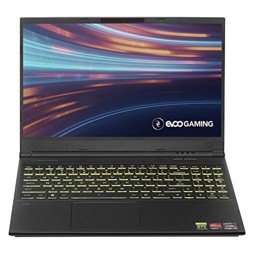 "EVOO Gaming 15.6"" Laptop, FHD, 144Hz, AMD Ryzen 7 4800H Processor, NVIDIA GeForce RTX 2060, THX Spatial Audio, 512GB SSD, 16GB RAM, RGB Backlit Keyboard, HD Camera, Windows 10 Home, Black"