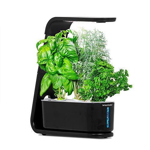 aerogarden sprout