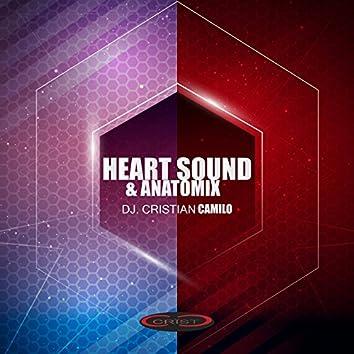 Heart Sound & Anatomix