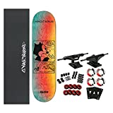 Darkstar Skateboard Complete Felix Future...