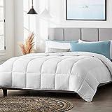 LUCID All-Season Microfiber Comforter– Down Alternative – Hypoallergenic –Box Stitched – 8 Duvet Loops-300 GSM, White, Queen