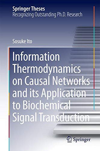 Information Thermodynamics on Causal Networks and its Application to Biochemical Signal Transduction (Springer Theses) (English Edition)