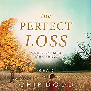 The Perfect Loss audiobook cover art