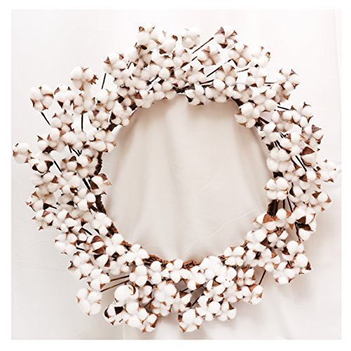 """Real Cotton Wreath - 23""""- 29"""" Adjustable Stems (As More As 110 Cotton Bolls per Wreath) Made from Natural White Cotton Flowers Bolls for Front Door Festival Hanging Decorations Welcome Decor Illinois"""