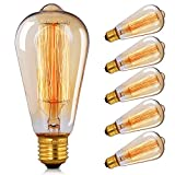 E27 Edison Light Bulbs - CMYK Dimmable 40W Edison Screw Bulb ST64 Antique Squirrel Cage Filament Light for Decorate Home 2700K Amber Warm Pack of 6