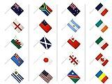 Digni Kit Drapeaux Coupe du Monde de Rugby 2015 sur hampes - 30 x 45 cm Sticker Gratuit