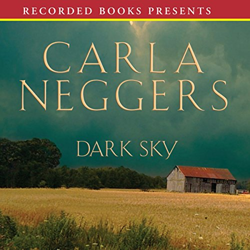 Dark Sky Audiobook By Carla Neggers cover art
