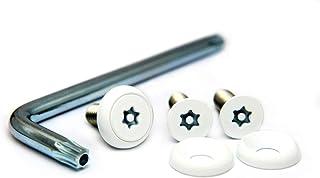 ナンバープレート用ボルト ピントルクスサラ ステンレス(ホワイト) 3本&工具セット M6×20