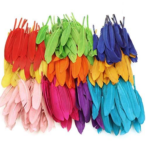 Mwoot 240 Piezas Plumas De Colors 10-15cm, Plumas Natural Para Manualidades, Bodas, Casa, Decoración De Fiestas