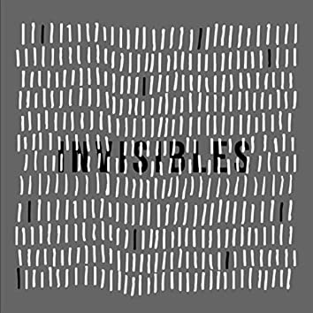 Invisibles (feat. Miguel Inzunza)