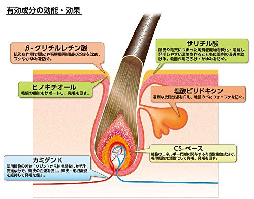 ヘアアクセルレーターL(レモンライムの香り)150mL【医薬部外品】
