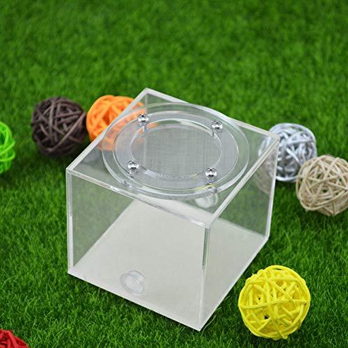 Jlxl Ameisennest Acryl Transparent Kindergarten Ameisenfarm Formicarium Insektennester Fütterungssystem Ameisenkästen Naturlernspielzeug