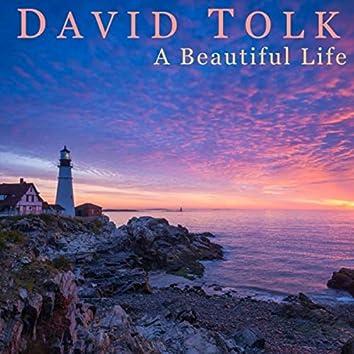 A Beautiful Life (feat. Steven Sharp Nelson)