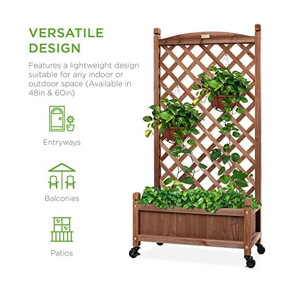 Best choice products 60in wood planter box & diamond lattice trellis, mobile outdoor raised garden bed for climbing… 7 diamond lattice: a 60-inch trellis is woven in a tight, diamond pattern to provide structural support and plenty of space for climbing plants planter box: fill the 10-inch deep box with your favorite potted plants and a water-resistant liner (not included) or a fresh soil bed thanks to built-in drainage holes optional wheels: a set of 4 included wheels can easily attach for added mobility and come with two locks for stability