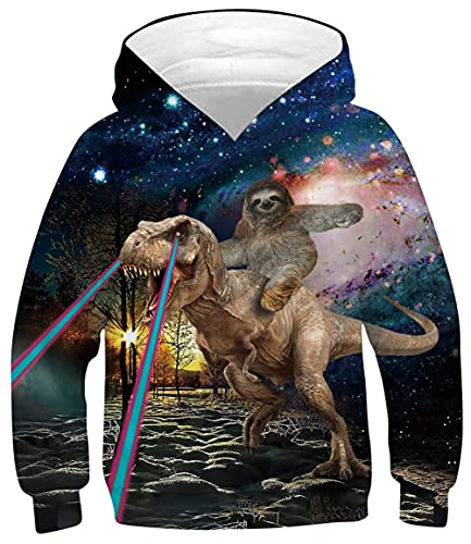 GIBIEE Boys Girls Novetly Hoodies 3D Print Unisex Pullover Sweatshirts with Pocket for 6-16 Years Sloth Dinosaur 12-13 Years