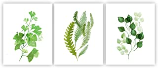 Barri Design Botanical Posters Wall Art Decor-Eucalyptus Leaves-(Set of 3)-8x10s Canvas Wall Art Green Leaf Home Decoration Office Wall Decor (UNFRAMED)
