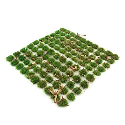 War World Scenics 4mm Wald-Bodendecker Selbstklebende Statische Grasbüschel x 100 - Modellbau Modellbahn Landschaftsbau Diorama Miniatur Tabletop Spiele Wargame Modelleisenbahn Geländebau