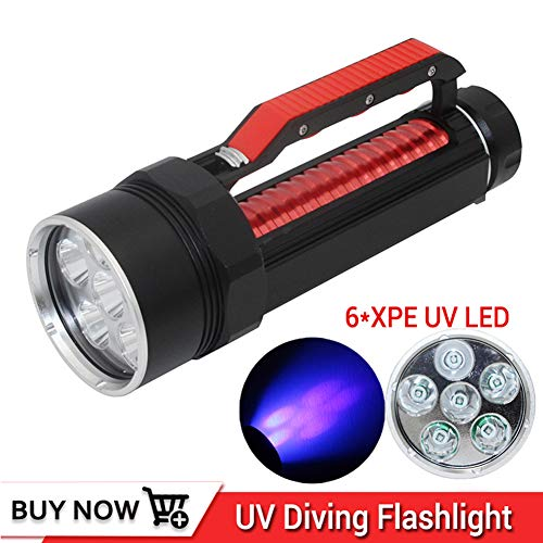 Professionelle UV-Licht 6 XPE LED Hohe Qualität UV-Tauchen Flashlgiht 395nm Led UV-Licht Taschenlampe Wasserdichte UV-Tauchlampe