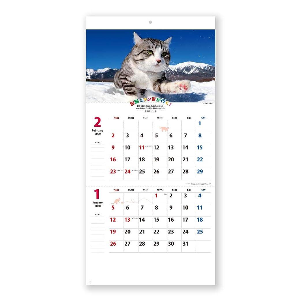 憲法そばに毎日新日本カレンダー 2020年 カレンダー 壁掛け 旅猫ニャン吉が行く! 2か月文字 NK907