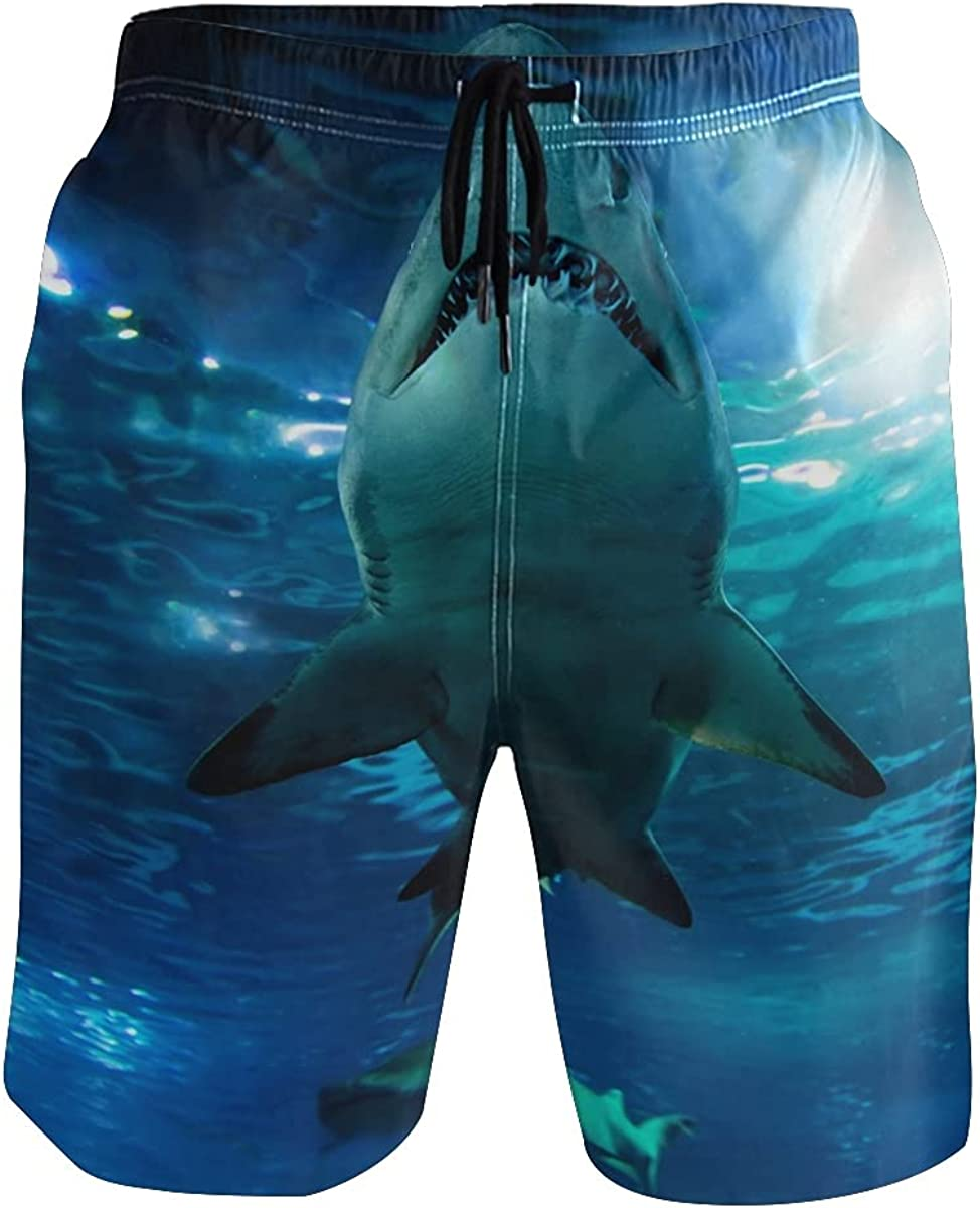 ALAZA Dinosaur Swim Trunks Men Funny, Fun Swim Trunks Guys Board Shorts,Dinosaurs Color TWE73