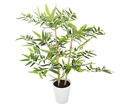 Closer2Nature Artificial 2ft 3' Golden Bamboo Tree in a Decorative White Pot