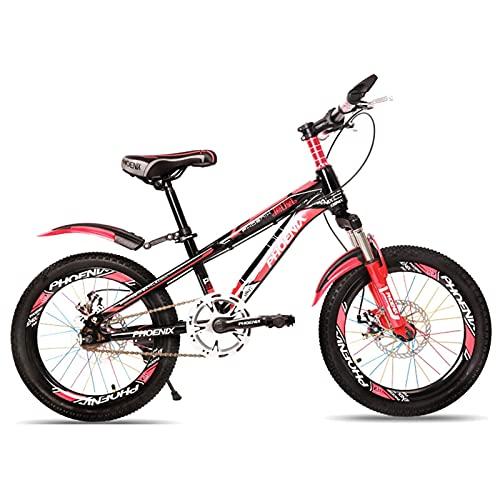 HUAQINEI Bicicleta al Aire Libre para niños de 18'7 velocidades Ajustable, para niños de 7-13 años y niñas Bicicleta de montaña Ajustable para niños