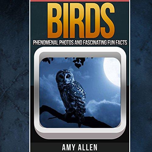 Birds audiobook cover art
