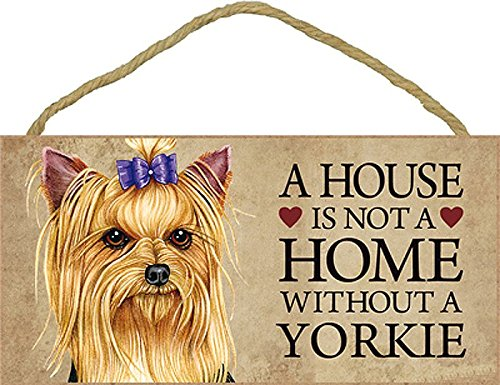 A house is not a home without Yorkie (Brown face with bow in hair) - 5\