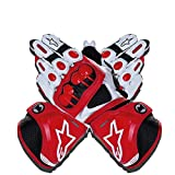 Guantes de Moto,Men Outdoor Motorbike Waterproof Gloves Motocicleta Full Finger Touch Screen Racing Motocross Guantes,para Bicicleta, Escalada,Motocross y Otros Deportes al Aire Libre (Rojo, XL)