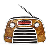G Track Vintage Classic Portable Radio with Bluetooth Speaker/FM/Micro SD Card/USB Input, AUX Line...