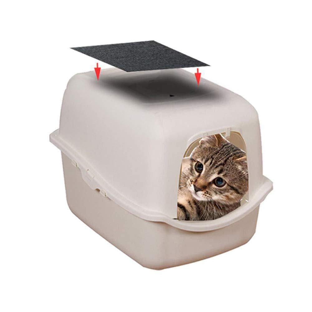 Dough.Q Filtro de Repuesto para Caja de Arena para Gatos, filtros ...