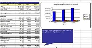 Children's Entertainment Center Business Plan - MS Word/Excel