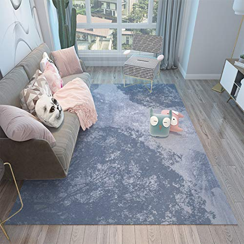 QWEASDZX Carpet Design Polyurethane Multifunctional Carpet Household Carpet Durable And Easy To Clean Living Carpet 50x80cm