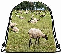 牧草地の動物に羊の放牧を群がらせる野生動物の農業食べ物と飲み物巾着バックパックジムサック軽量バッグ耐水性ジムバックパック女性と男性のためのスポーツ、旅行、ハイキング、キャンプ、Sh