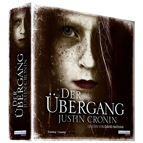 Der Übergang audiobook cover art