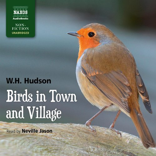 Birds in Town and Village audiobook cover art