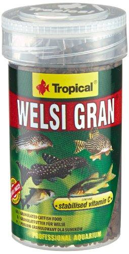 TROPICAL Welsi Granulat pour Aquariophilie 100 ml - Lot de 2