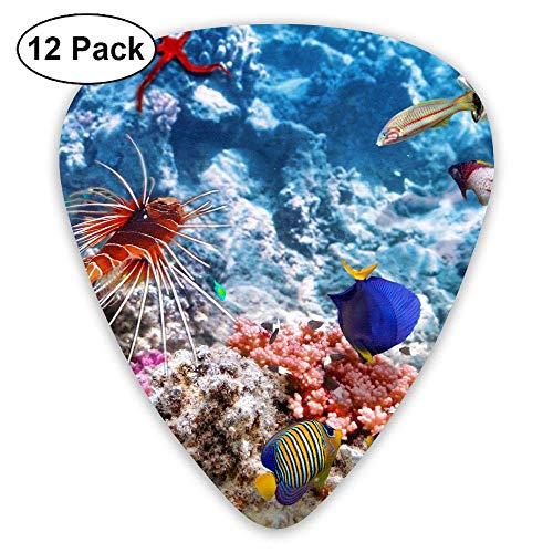 Klassieke Gitaar Pick (12 Pack) Oceaan Zee Oranje Vis en Koraal Speler Pack voor Elektrische Gitaar, Akoestische Gitaar, Mandoline, Gitaar Bas Eén maat Kleur3