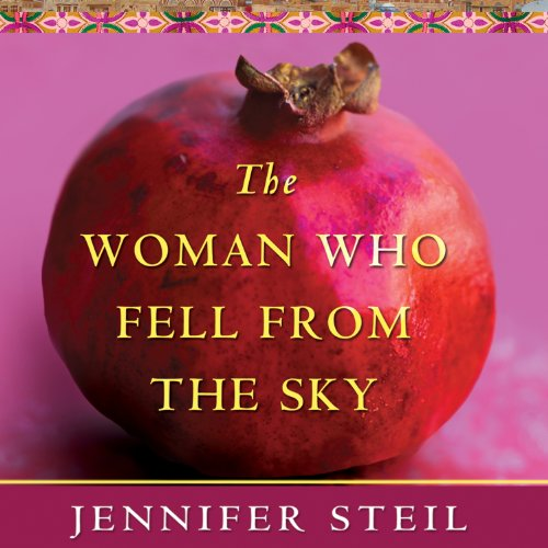 The Woman Who Fell from the Sky audiobook cover art