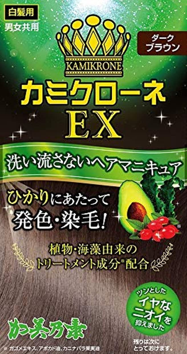 二次花瓶原始的なカミクローネEX ダークブラウン × 18個セット