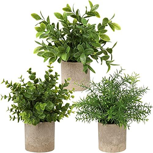 Briful Kunstpflanze Mini Künstliche Pflanze Eukalyptus Rosmarin Kräuter im Topf Deko Badezimmer Schreibtisch Küche Garden Dekoration 3er Set