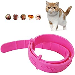 Cat Adjustable Pet Collar Removal Off Waterproof Rubber Collar Flea and Tick Control Collar
