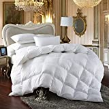 Best Cozy Beddings Goose Down Comforter Kings - Egyptian Bedding 8PC California King 1200 Thread Count Review