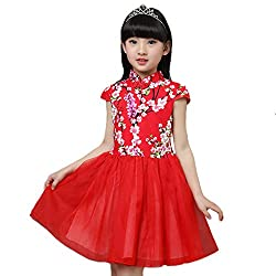 Little Girls Floral Cheongsam Chinese Qipao Bodice Tulle Dress