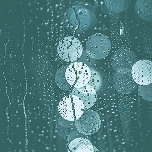 Aantrekkelijk Regenachtige Dagmuziek