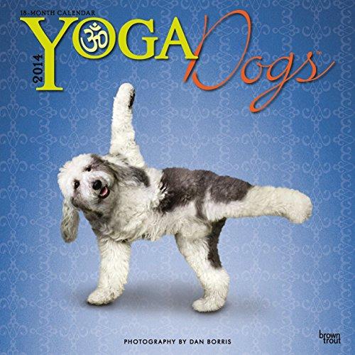 Yoga Dogs 2014 - Joga-Hunde: Original BrownTrout-Kalender [Mehrsprachig] [Kalender]