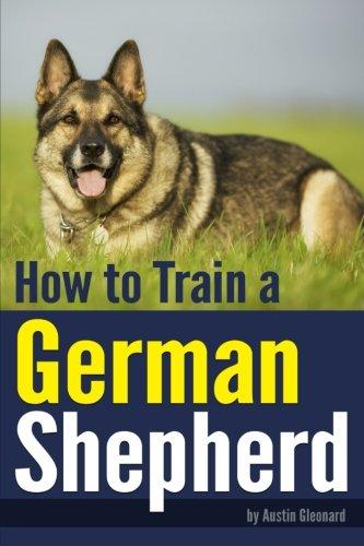 How to Train a German Shepherd: An Essential German Shepherd Training Guide